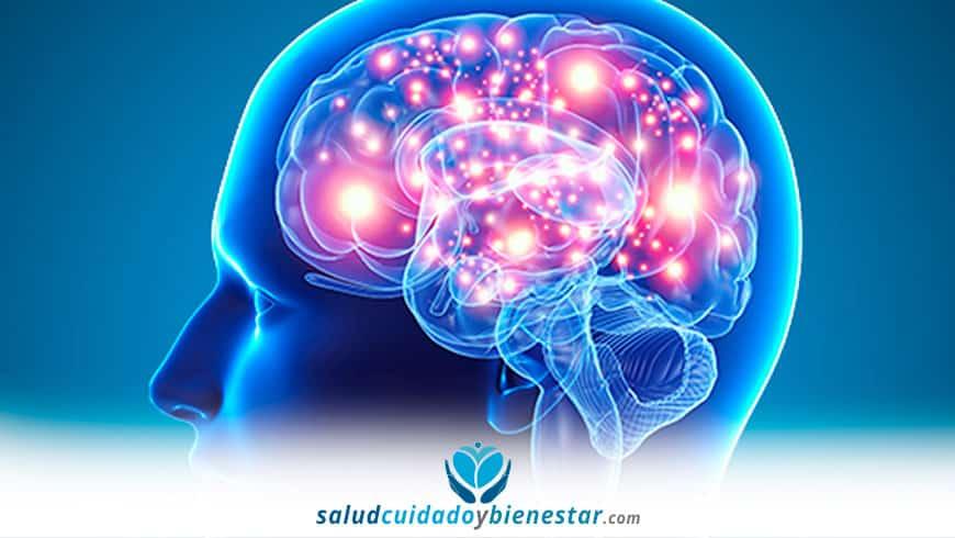 Importancia de la estimulación cognitiva en el tratamiento del Alzheimer