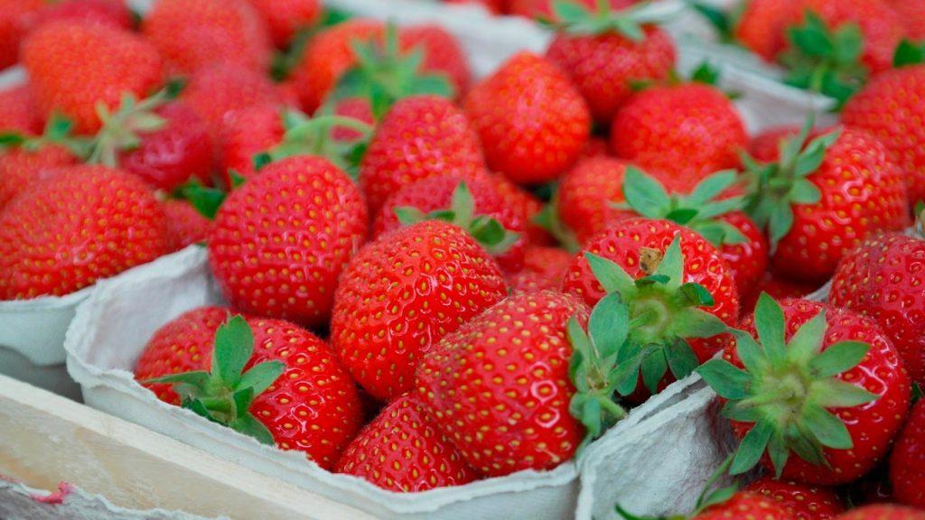 Productos ecológicos-de-herbolario. Frutas y verduras
