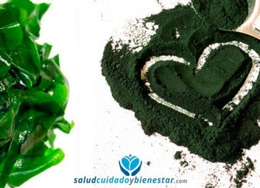 Beneficios y propiedades de la espirulina ecológica