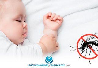 Cómo proteger a tu bebé de los mosquitos