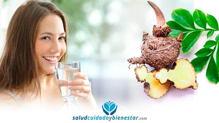 suplemento con glucomano raiz de konjac para dieta baja en calorias
