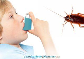 Las cucarachas causa del asma infantil en las ciudades