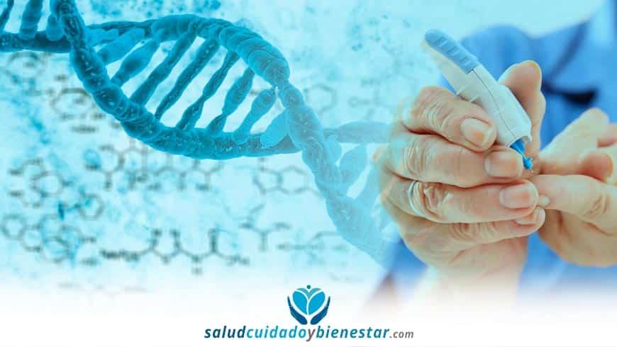 diabetes hereditaria relacion genetica